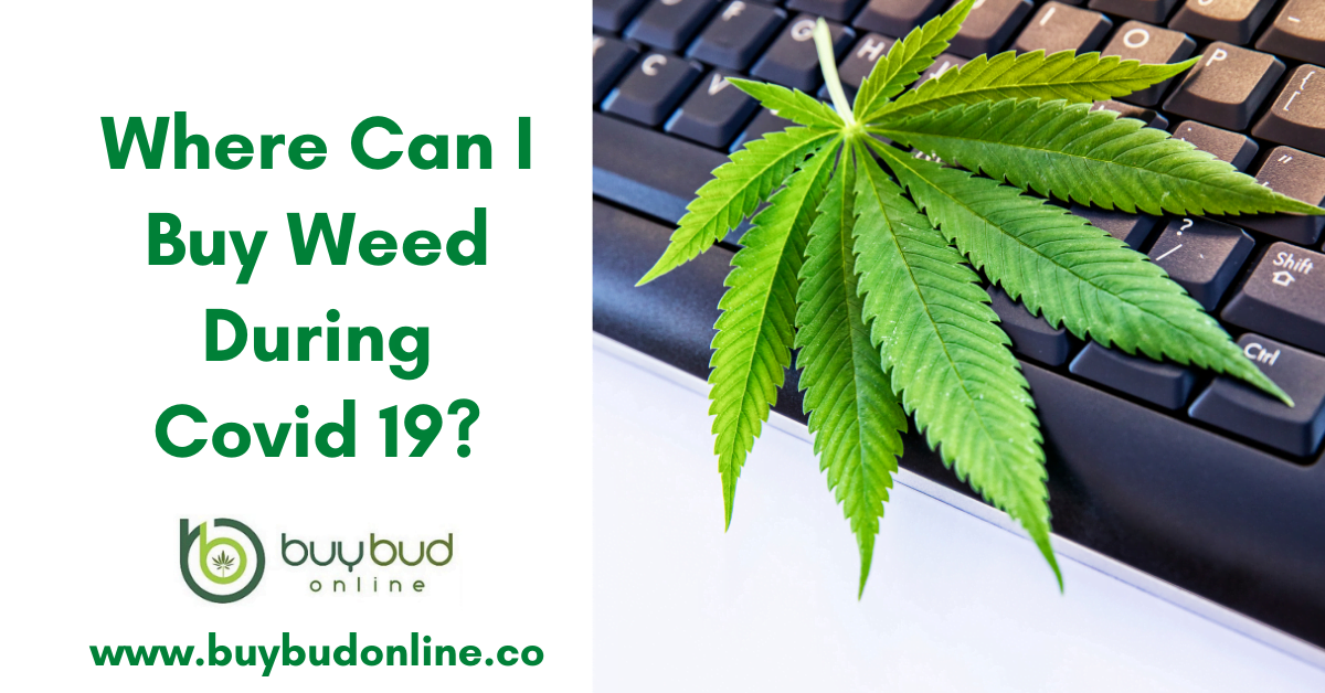 Buy weed During Covid 19