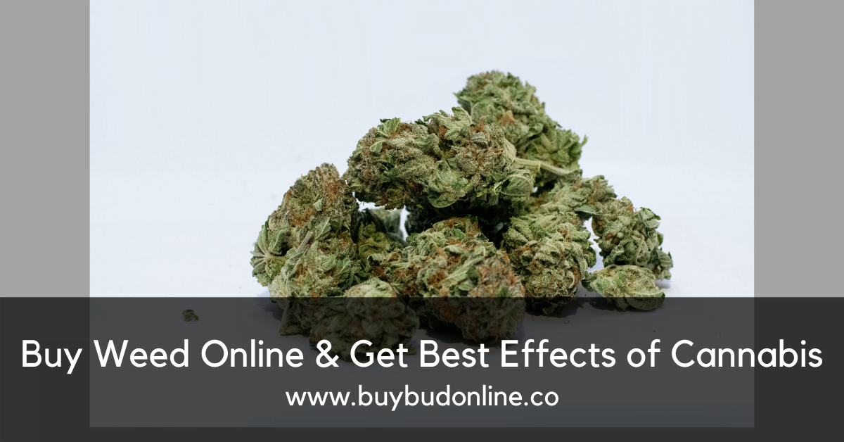 Buy Weed Online & Get Best Effects of Cannabis